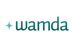 Wamda Fintech Saudi